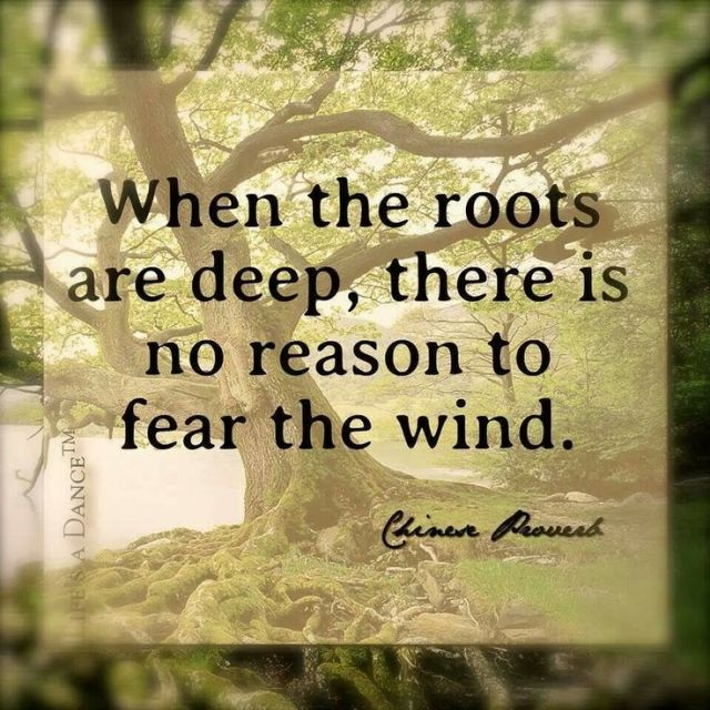 when-the-roots-are-deep