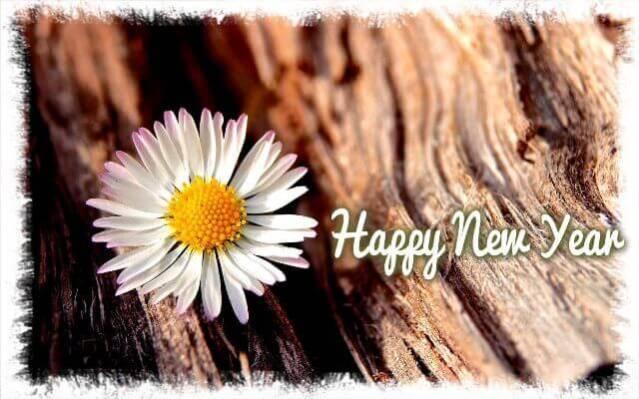 best-new-year-photos